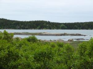 Vinalhaven Basin